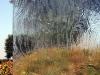 glass-krystalstorm